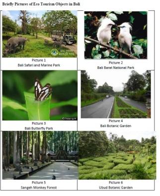 Eco-Bali